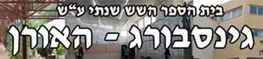 אורט גינסבורג האורן